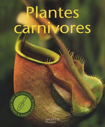 """Plantes carnivores : Découvrez le monde fascinant des """"ogres verts"""""""